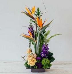 Florists in London Ontario