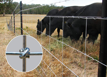 Rural Fencing in Perth