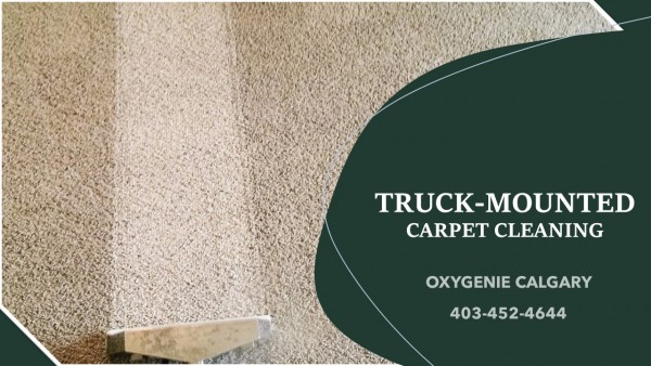 Oxy-Genie Carpet Cleaning Services