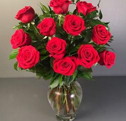Baltimore Florist