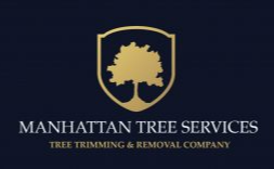 Manhattan Tree Services, a Top Tree Removal Company in New York City Announces Expanded Service for NY