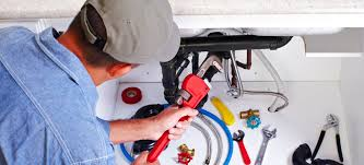 EMERGENCY PLUMBING SERVICES IN L.A. DETECT WATER LEAKS ON TIME AND PREVENT BIG MOLD PROBLEMS