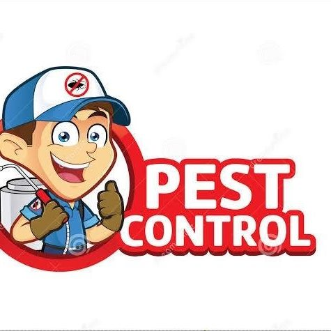 D & D Pest Control, a Top Pest Control Company in Palmerston North Offers Professional and Affordable Bed Bug Extermination Services