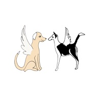 Miranda Alcott & Company Announces Two-Level Animal Communication Courses
