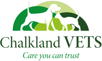 Veterinary Clinic Servicing Chippenham Area Continues to Ensure \'Fear Free\' Service
