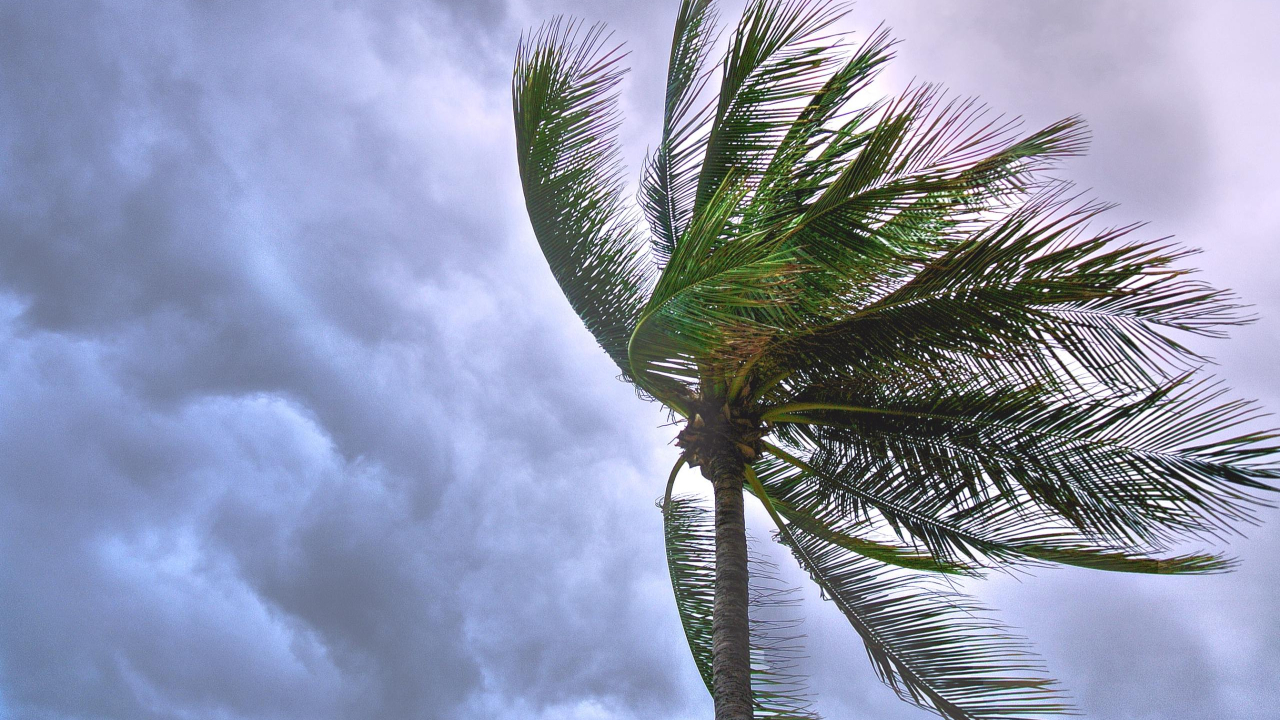 Florida Entering Peak Tropical Storm Season