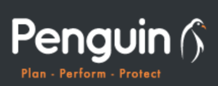 Penguin Wealth is Committed to Building Bespoke Financial Plans for Their Clients