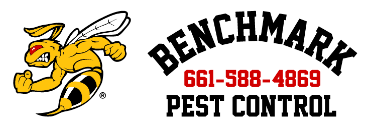 Benchmark Pest Control Provides Top-Quality Pest Control in Bakersfield