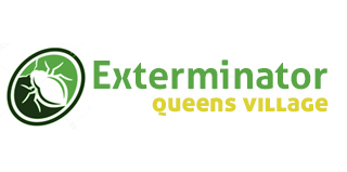 Queens Exterminator Introduces Innovative methods to deal with pests