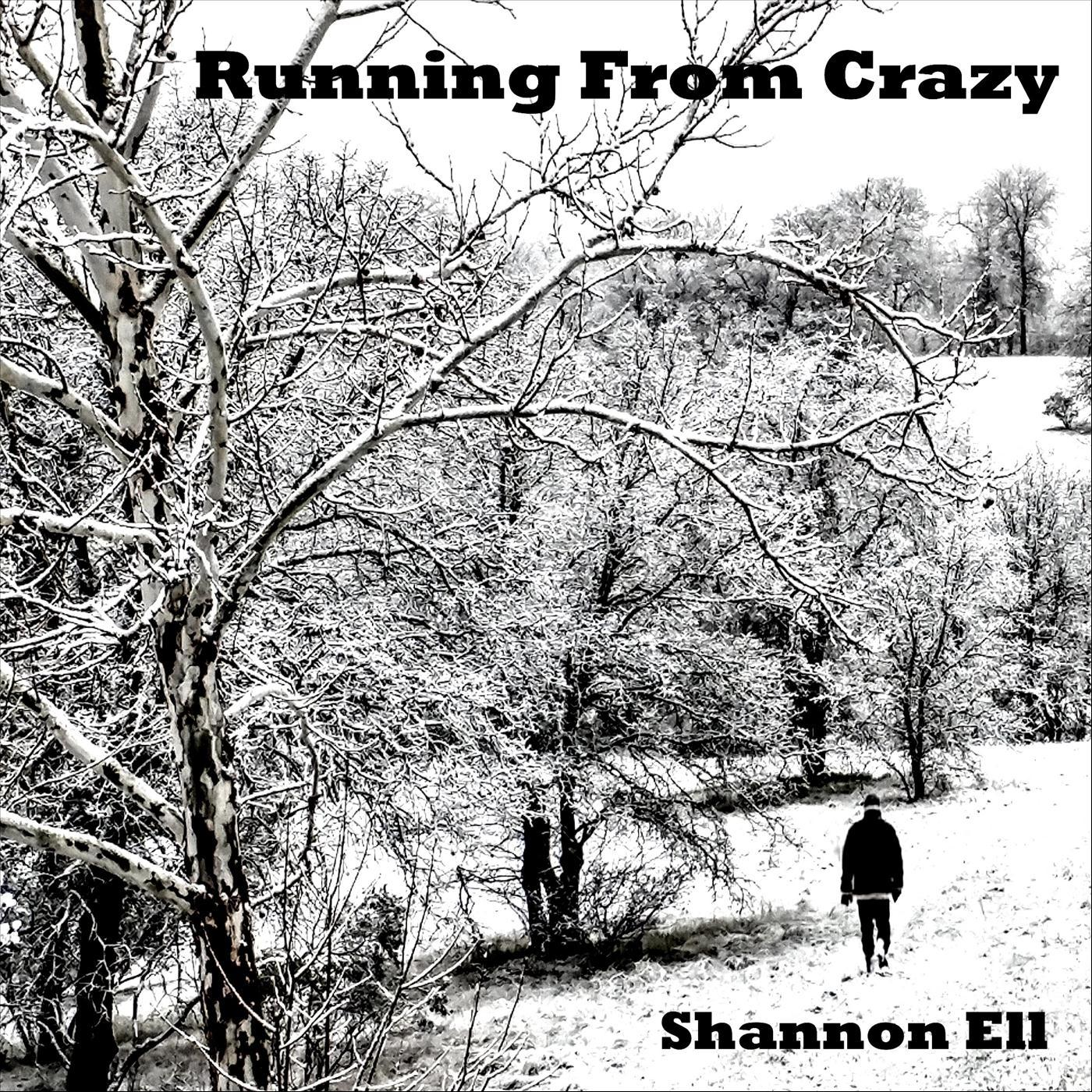 Shannon Ell Brings It With Solid Debut Album