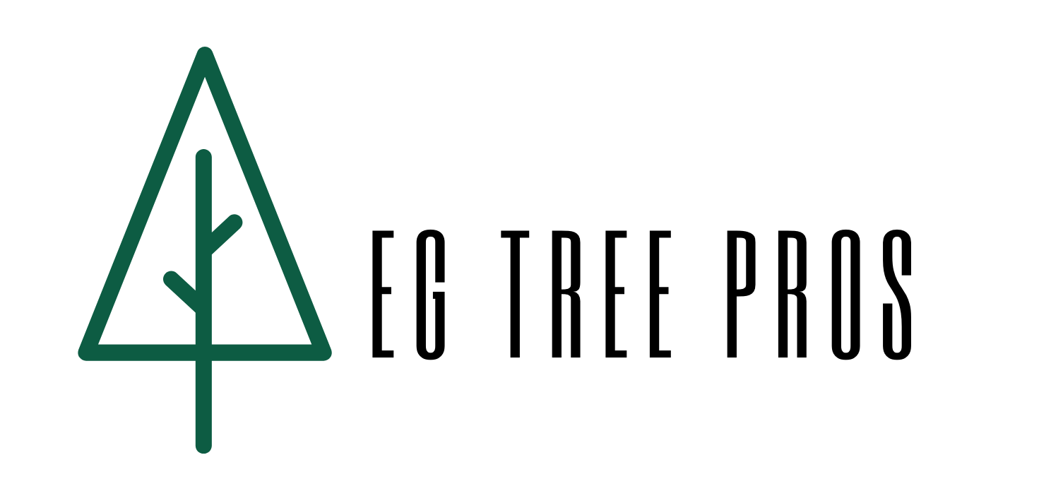 EG Tree Service Pros Announces Its Expanded List Of Services