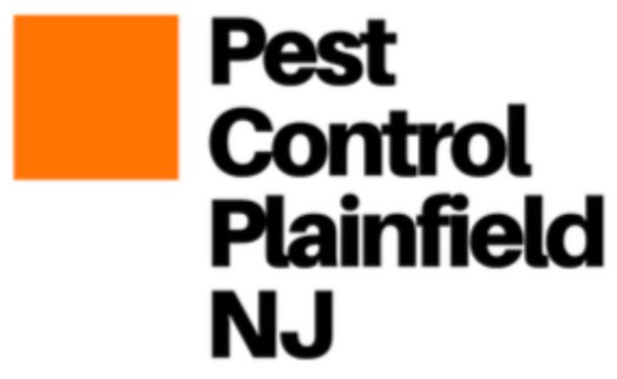 Pest Control Plainfield, NJ is the Best Pest Control Exterminator in Plainfield, NJ