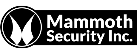 Mammoth Security Inc. New Britain Provides Security System Installation, Linked By Rutger's Study to Burglary Reduction