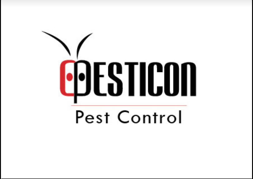 Pest Control Toronto Firm Awarded HomeStars Award Four Years in A Row
