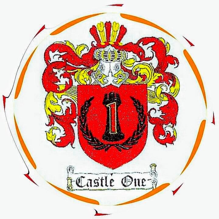 Castle One Rotary Steam Carpet Restoration Guarantees 100% Customer Satisfaction