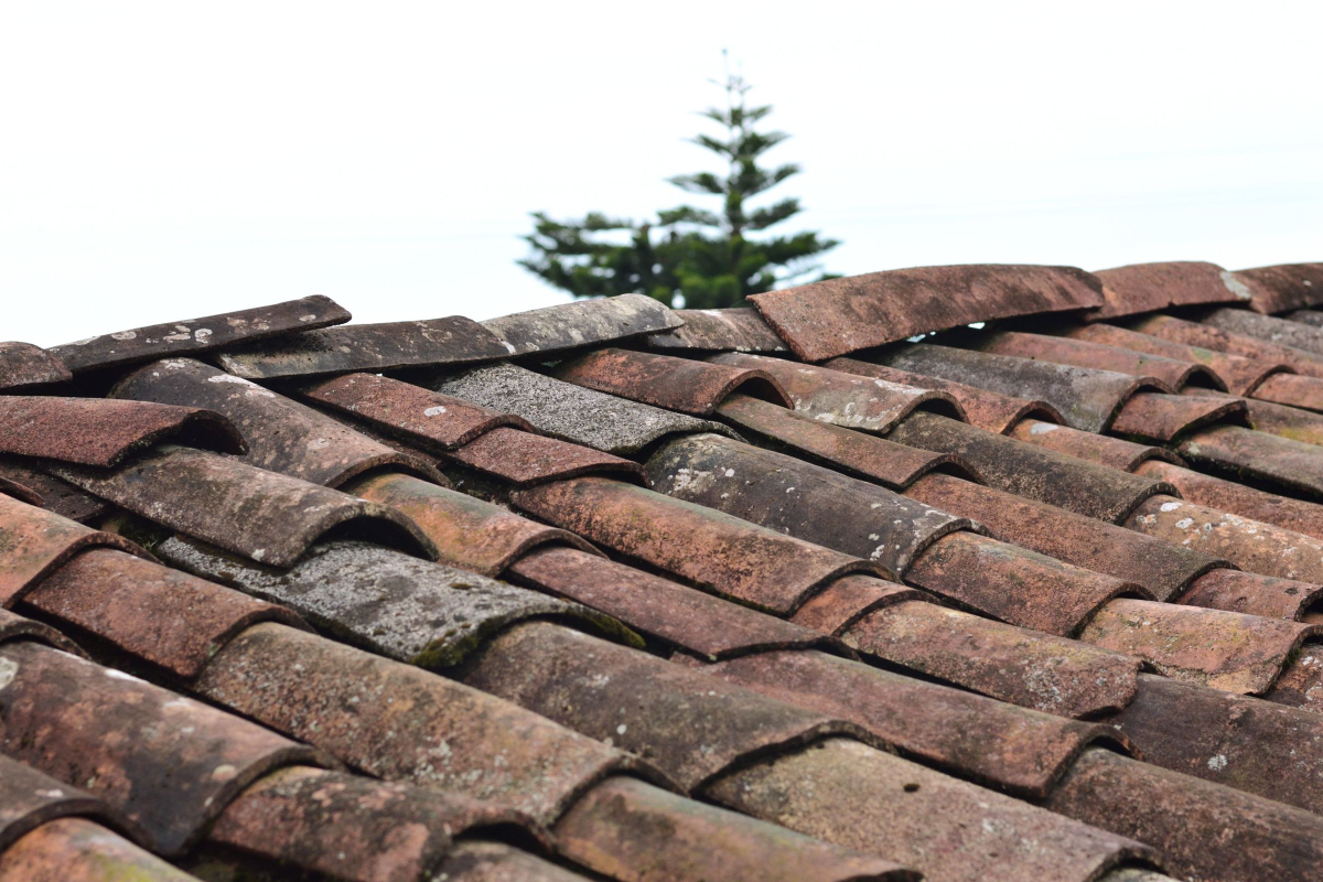 Roofing Services Available in the Bay Area