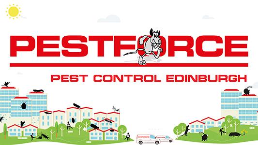 Pest Control Edinburgh Firm Prepared For Rodent Season