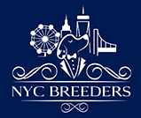 NYC Breeders, a Top-Rated Brooklyn Pet Store, Offers Puppies for Sale with Lifetime Complimentary Dog Training