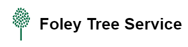 Foley Tree Service Offers Safe Tree Removal Service in Norman, OK