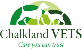 Fear Free Certification Makes All the Difference at Chalkland Vets Ltd