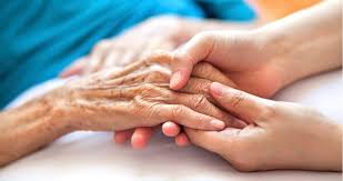 Palliative Care Provided to Older Adults in San Luis Obispo, CA