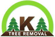 Oakwood Tree Removal Company Advises Customers To Research And Store A Phone Number For Emergency Tree Removal Services