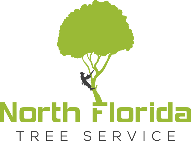 North Florida Tree Service Offers 24/7 Emergency Tree Services In Jacksonville FL