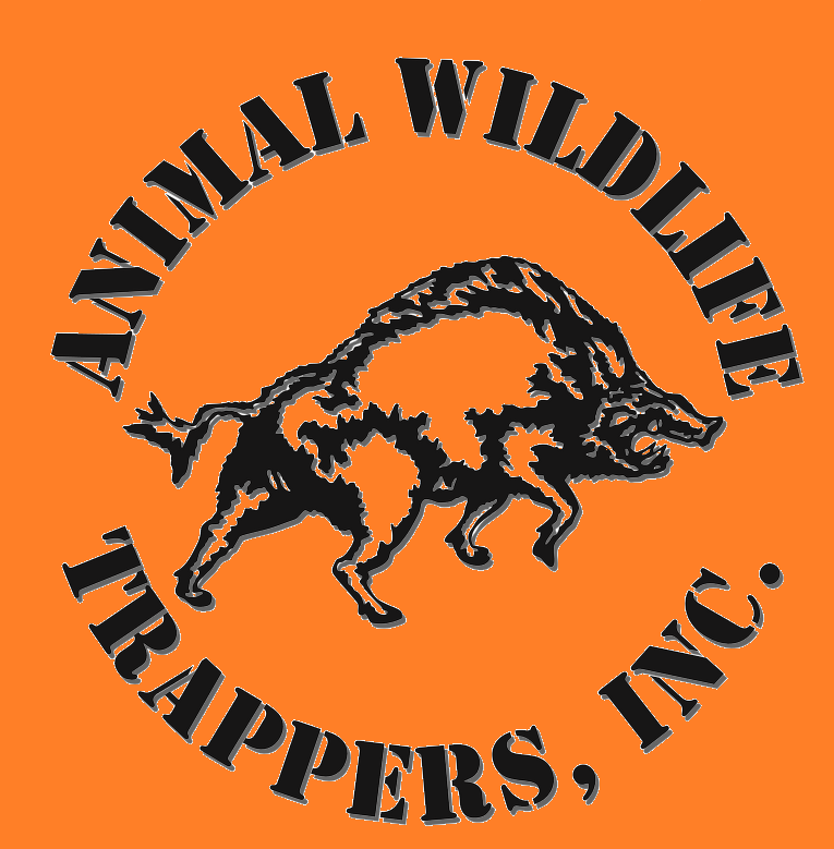 The Company Providing Humane Wildlife Removal, Animal Wildlife Trappers is Now Performing Animal Removal and Wildlife Removal Throughout FL