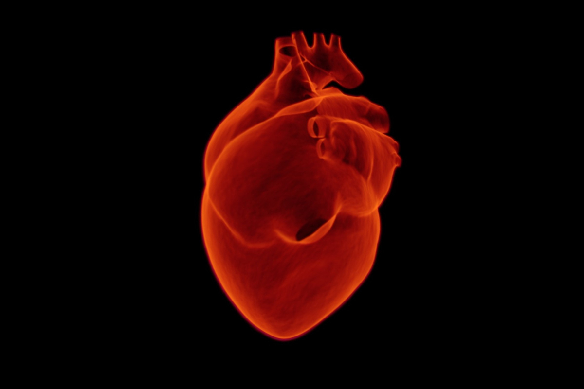 Understanding Cardiology and How This Info Can Save Lives