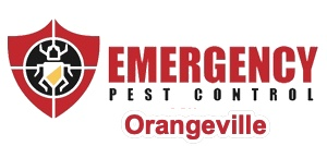 Orangeville Pest Control Company, Emergency Pest Control Orangeville, Announces They are Fully Open and Operating While Taking Safety Precautions During COVID-19