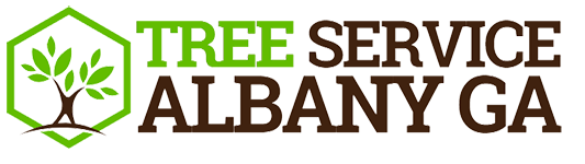 Albany Tree Removal Firm A to Z Tree Care Recognized As Top Local Arborist Company