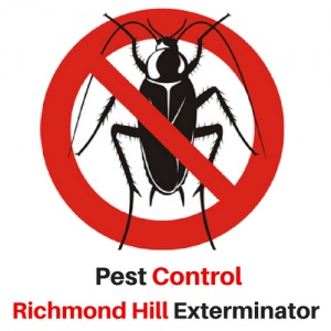 Pest Control Richmond Hill Exterminator, a Top-Rated Pest Service in the York Region of Richmond Hill, ON Announces They are Fully Operational During COVID-19