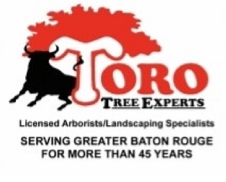 Baton Rouge Tree Removal Firm Toro Tree Experts Broadens Scope Of Service Categories