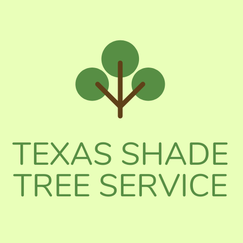 Tree Trimming Killeen Firm Texas Shade Tree Service Expands Operations