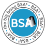 Big Bang's BSA⁵ Cost-Effective Digital Transformation
