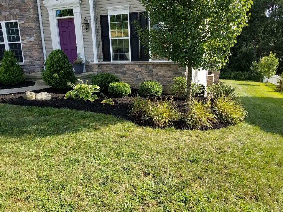 Serviscapes Provides Summer Landscaping Tips to Homeowners in Canal Fulton