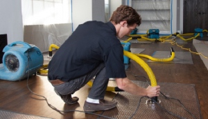 Water Damage Pro Minneapolis Now Offering 24/7 Emergency Services in Minneapolis