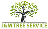 Riverside Tree Service, a Top Tree Removal Company in Riverside, CA Announces New Website, Launches Special Discount on Tree Services