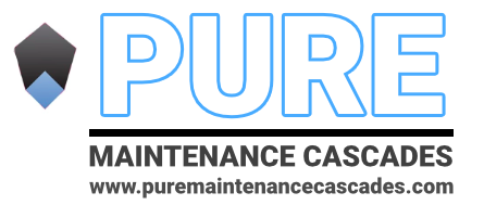 Pure Maintenance Uses Patented New Dry Fog Mold Removal Technology