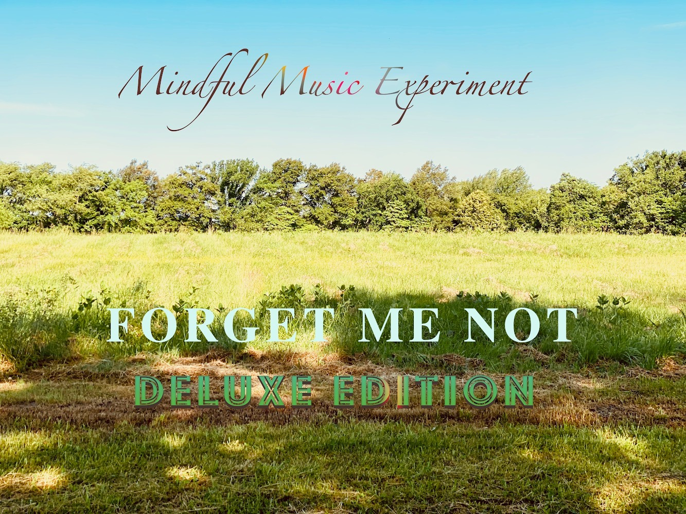 """Mindful Music Experiment Wows With """"Forget Me Not"""""""