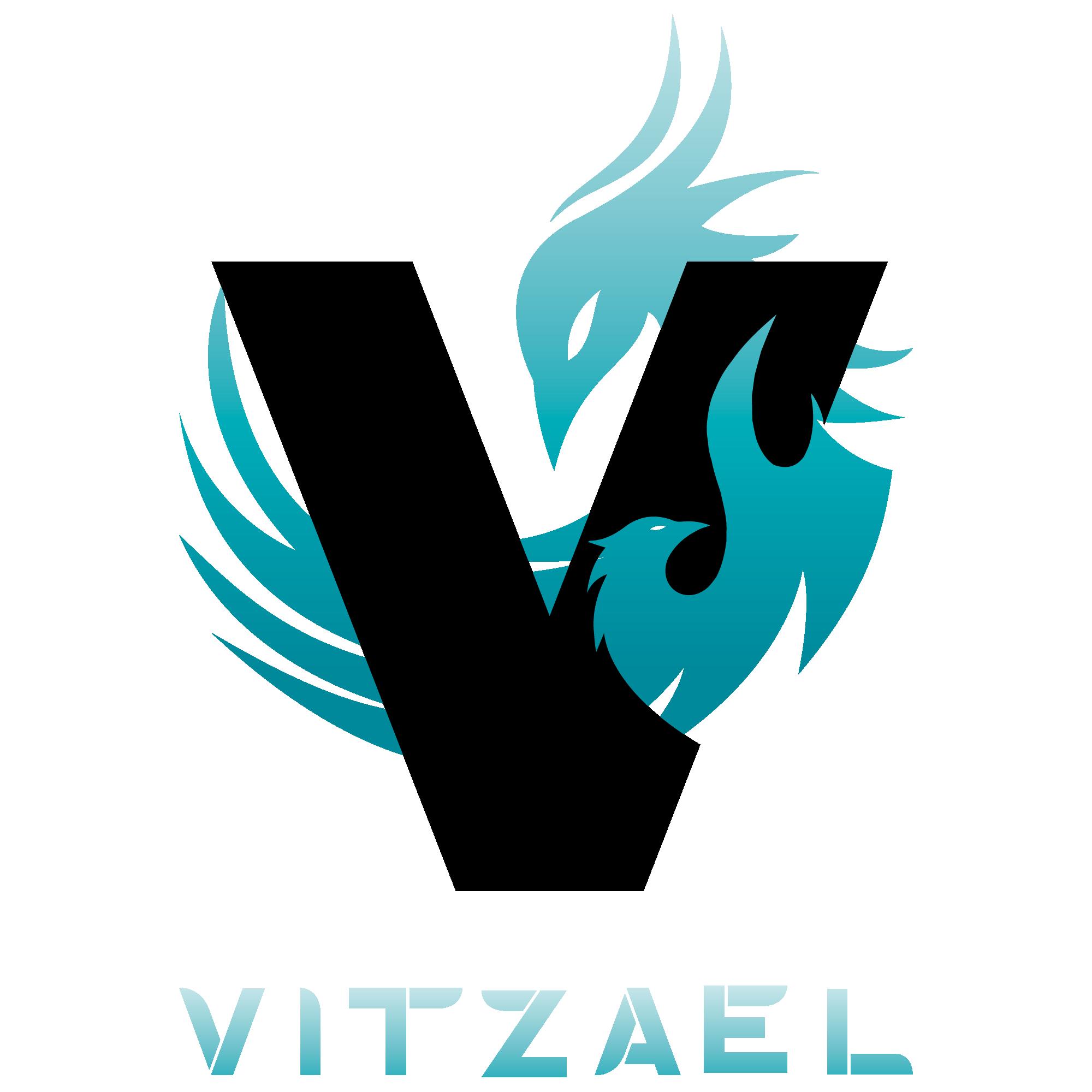 Vitzael Inc Ignites Business Productivity with Striking Digital Marketing
