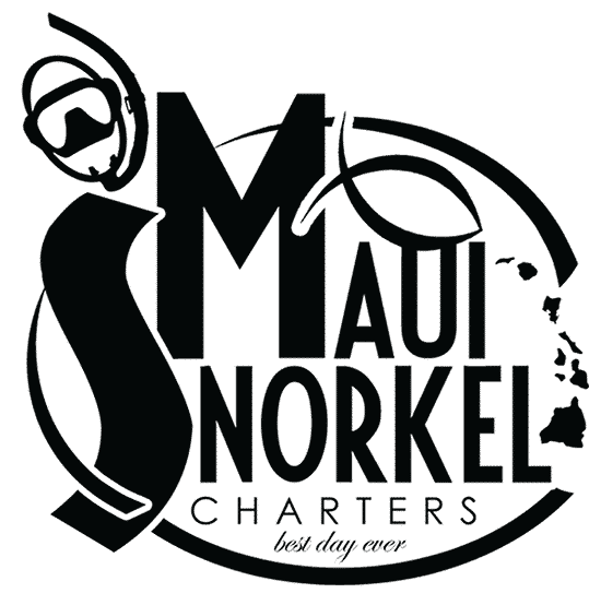 Maui Snorkel Charters Offers a Breathtaking and Fun Snorkeling Experience in Kihei