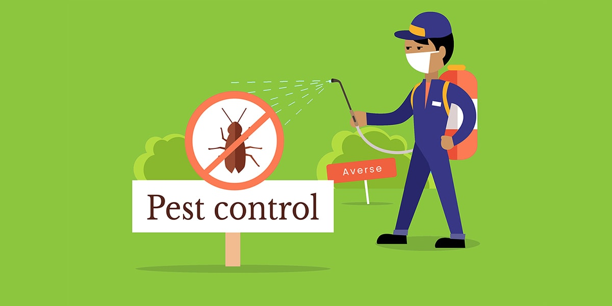 Averse Pest Control Enlightens the Public on Why They Need To Get Professional Pest Control