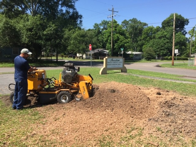 Jacksonville's North Florida Tree Service Shares the benefit of State-of-the-Art equipment in Handling Trees.