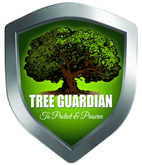 Tree Guardian is a Top-Rated Lafayette Tree Service Provider LA