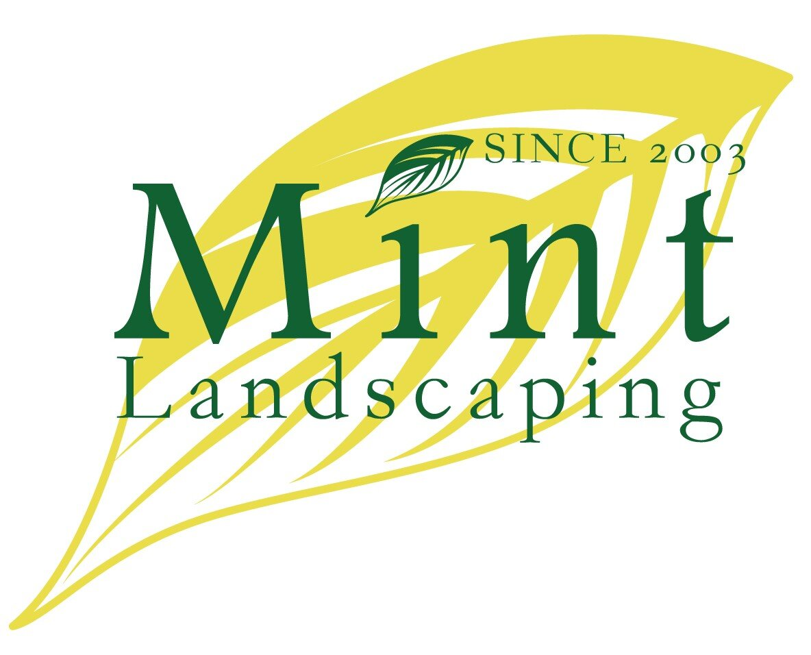 Mint Landscaping Offers Solutions to Making the Outdoor Living Area More Enjoyable During the COVID Pandemic