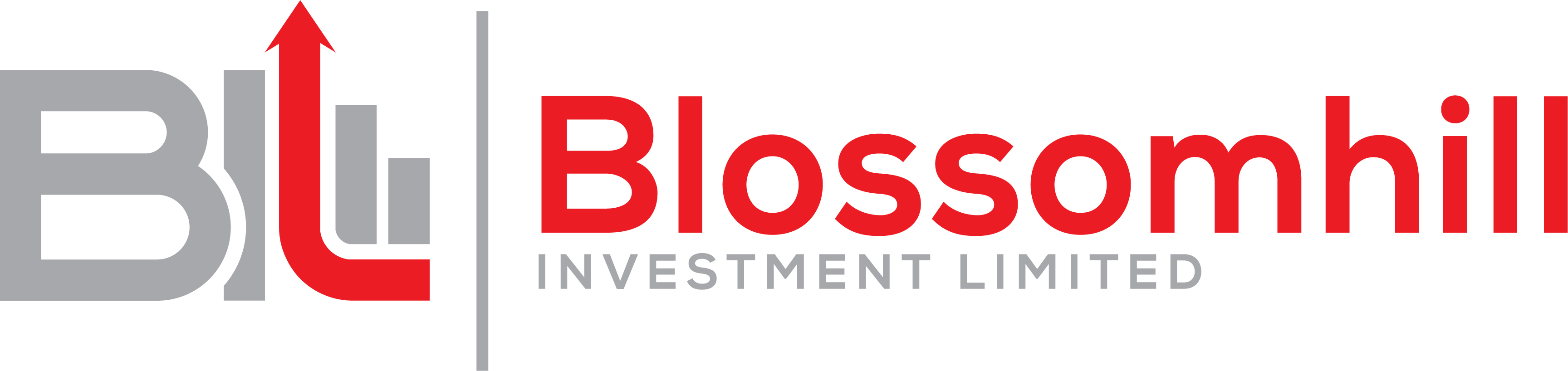 Blossomhill Investment Limited Helping Clients Achieve Financial Aspirations