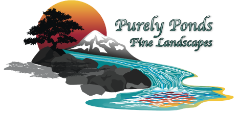 Beautify One's Land With a Custom Pond and Fine Landscape Design Courtesy of Purely Ponds Fine Landscapes, the Top-Rated Pond Contractor in Colorado Springs, CO