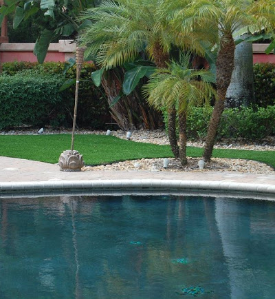 A Top-Rated Synthetic Turf Company in Jupiter Is Now Installing a Pet-Friendly Artificial Grass