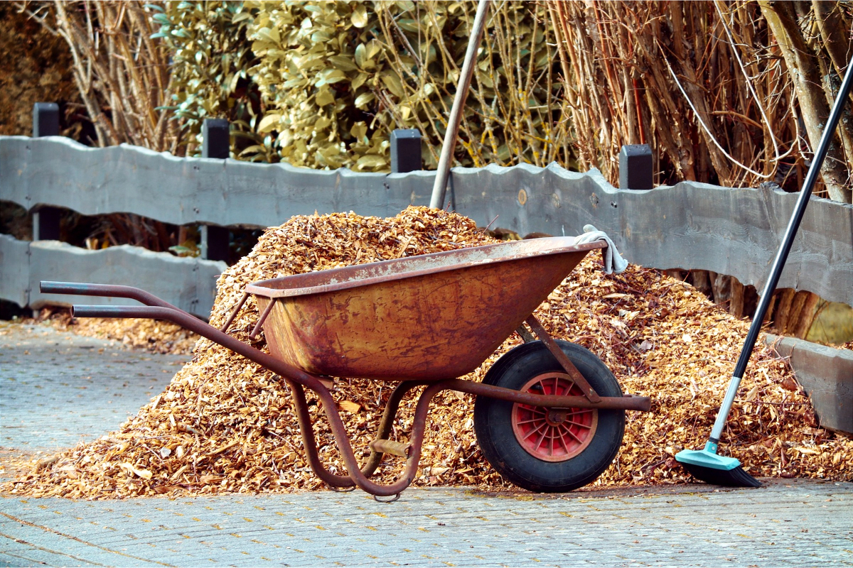 Property Owners Must Not Make Common Mistakes with Mulch